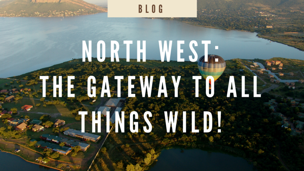 North West: South Africa's Gateway To All Things Wild