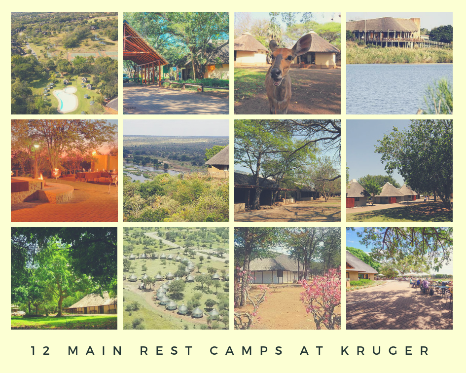 12 Rest Camps At Kruger