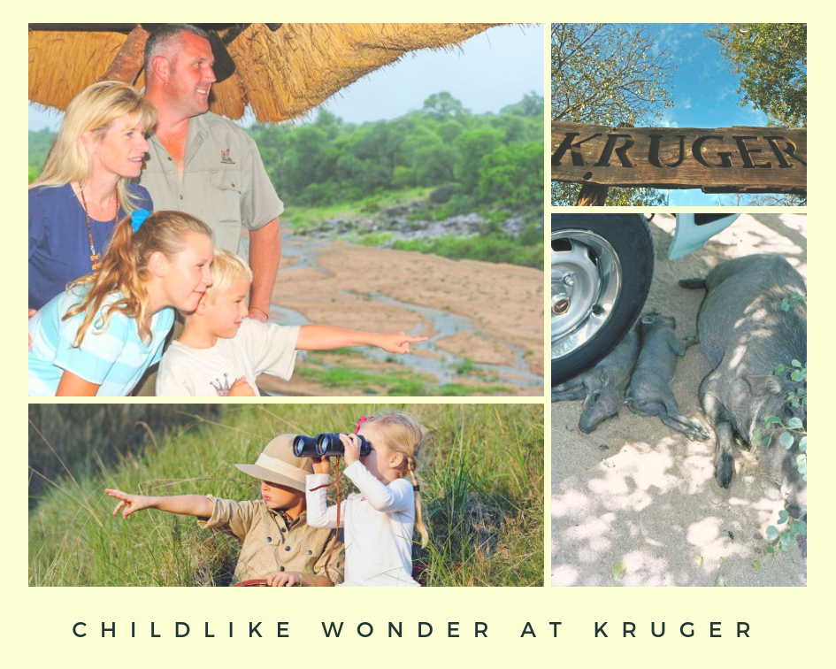 Childlike Wonder at Kruger